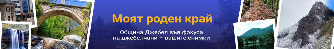 gallery banner